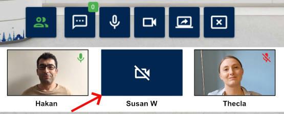 Virtual Classroom - Student no webcam